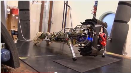 Meet Atlas, DRC Robot